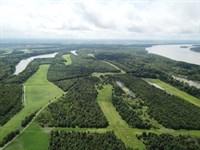 Montezuma Bend Plantation : Lula : Coahoma County : Mississippi