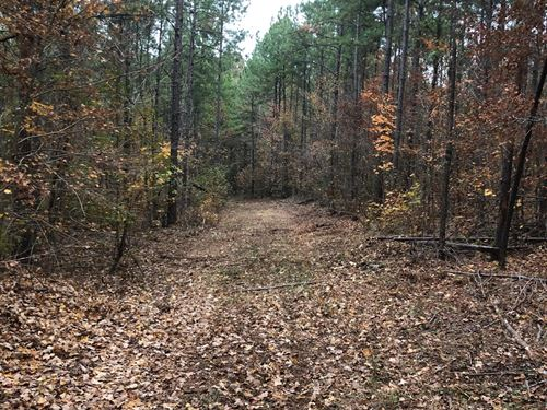 40+/- Acre Get Away : Lineville : Clay County : Alabama