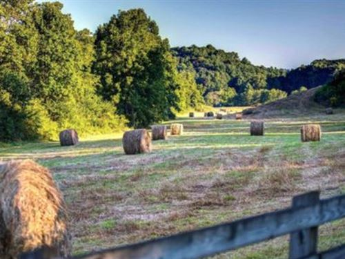 30+ Acres With Tiger Mountain Views : Tiger : Rabun County : Georgia