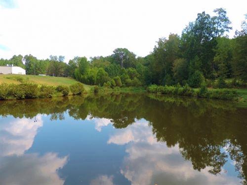 Grey Land Farm : Greensboro : Greene County : Georgia