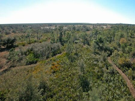 Land Liquidation Homesites 14,990 : Frostproof : Polk County : Florida