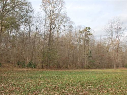 Lowndes County 496 Acre Land : White Hall : Lowndes County : Alabama