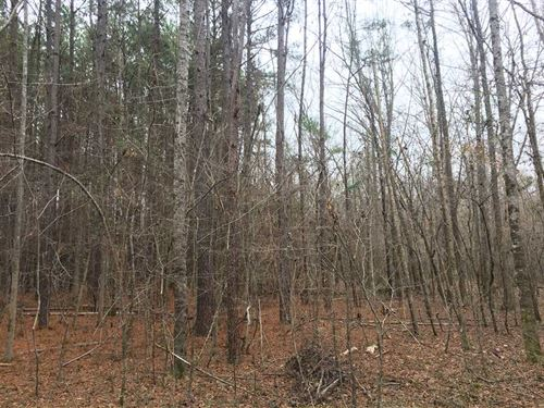 Noxubee County 117 Ac on Hashu : Macon : Noxubee County : Mississippi