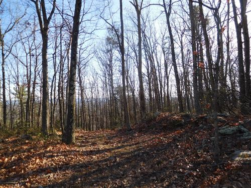Priced to Sell $34,900 : Augusta : Hampshire County : West Virginia