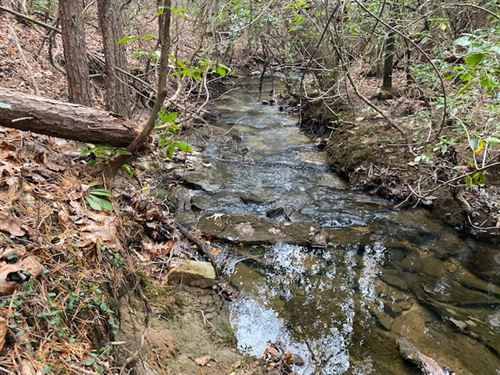 20.37+/- Acres Borders State Land : Sequatchie : Tennessee