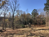 2 Cabins Diverse Tract : Jeffersonville : Twiggs County : Georgia