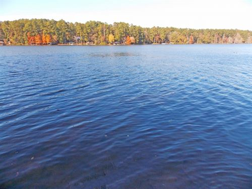 2.42 Acres On Lake Dixie Springs : Summit : Pike County : Mississippi