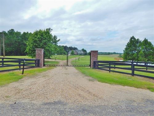 Home/Camp/420 Acres / Walthall : Tylertown : Walthall County : Mississippi