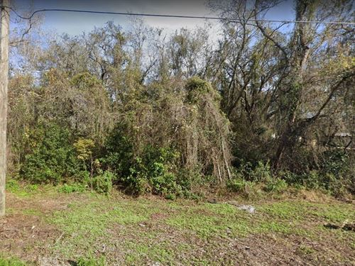 2 Mobile Homes Lots Together : New Port Richey : Pasco County : Florida