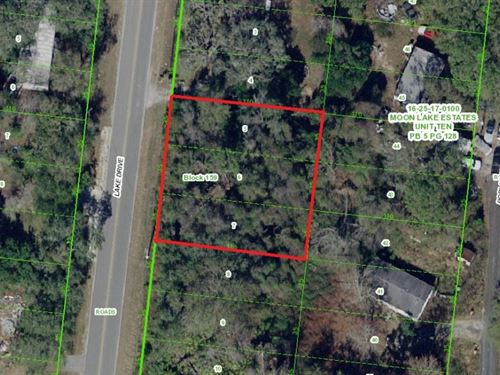 3 Mobile Homes Lots For Sale : New Port Richey : Pasco County : Florida