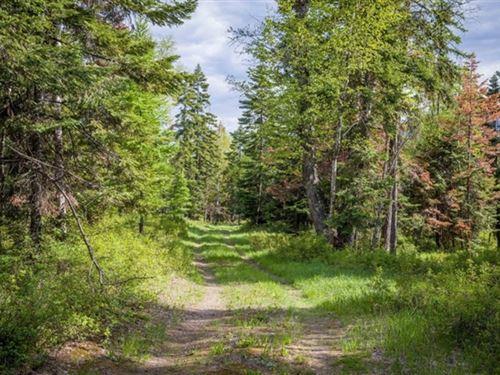 159.82 Acres in Bigfork, MT : Bigfork : Lake County : Montana