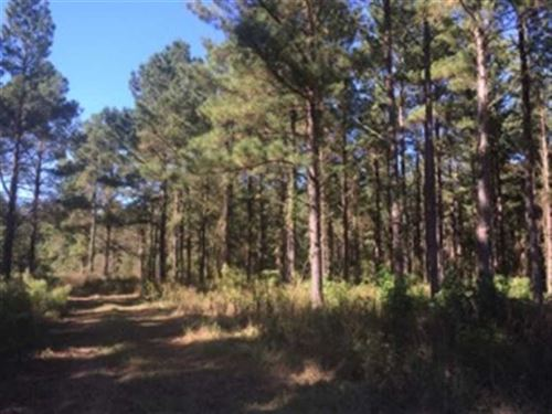 107 Acres Available in Sumter Coun : Sumter : South Carolina