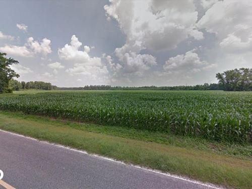 15 Acre Homesite : Shannon : Hoke County : North Carolina