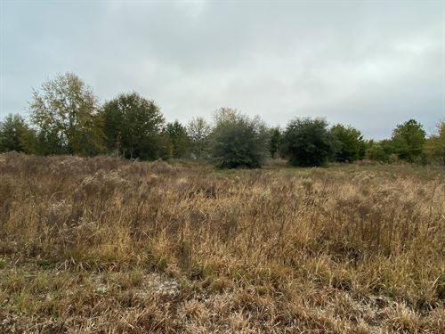 5 Acres In Suwannee County : Live Oak : Suwannee County : Florida