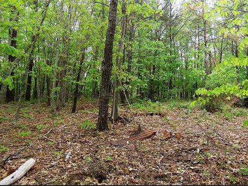 Build Ready Lot And Utilities : Bluefield : Mercer County : West Virginia
