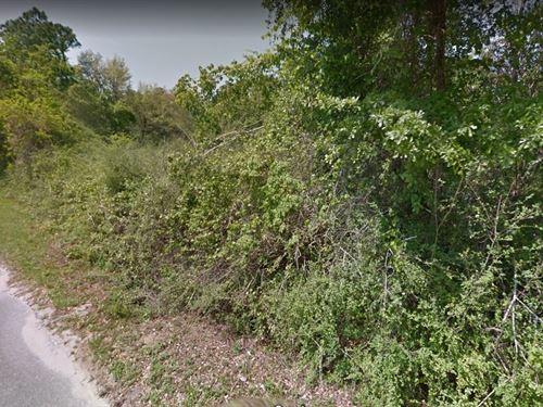 2 Lots, 0.26 Acres Together : Pensacola : Escambia County : Florida