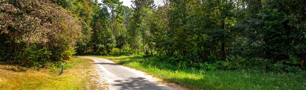 Lot Borders National Preserve Land : Cleveland : Liberty County : Texas