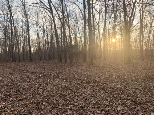 3 Acre Lot Located on 160E-8 Lot 2 : Doniphan : Ripley County : Missouri