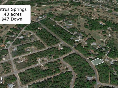 Majestic .40 Acre Lot : Citrus Springs : Citrus County : Florida