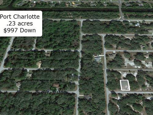 .23 Acre Paved Road Port Charlotte : Port Charlotte : Charlotte County : Florida