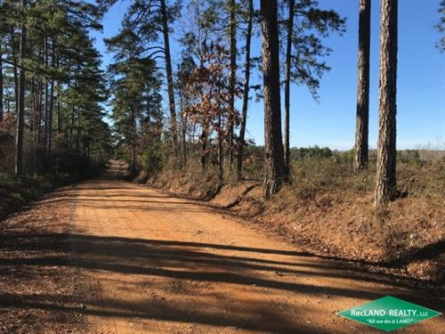 120 Ac, Timberland With Home Site : Waldo : Columbia County : Arkansas