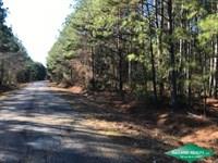 80 Ac, Timberland With Home Site : Waldo : Columbia County : Arkansas
