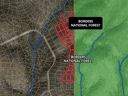 Hunting Land New Mexico Mountains : Timberon : Otero County : New Mexico