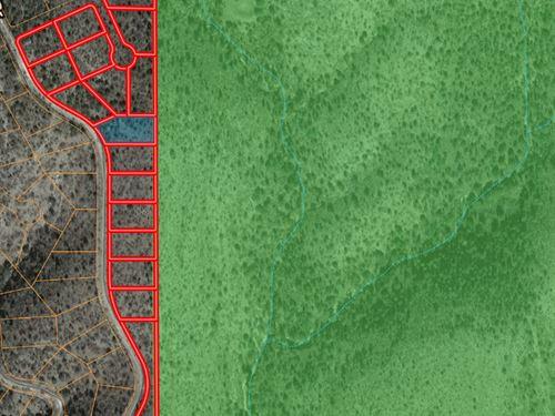 Hunting Land Sacramento Mountains : Timberon : Otero County : New Mexico