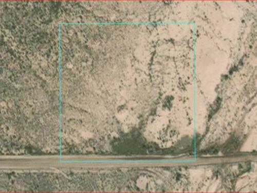 Stunningly Reclusive : Holbrook : Navajo County : Arizona