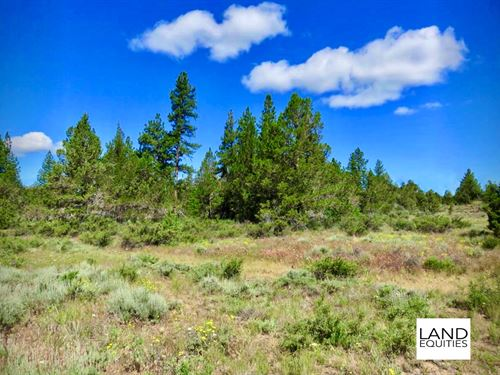 Trees & Seasonal Creek Only $99/Mo : Beatty : Klamath County : Oregon
