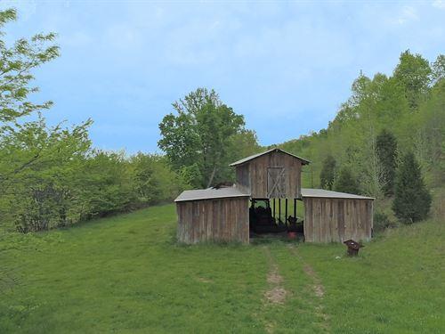 Cypress Creek Farm : Florence : Lauderdale County : Alabama