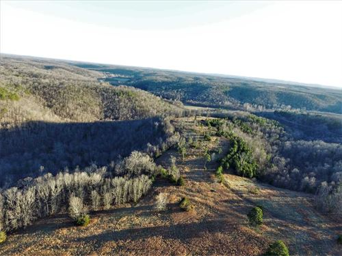 107 Wooded Acres With Hay Field : Ava : Douglas County : Missouri