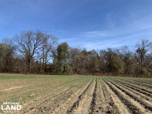 Farmland With Great Hunting Near Bu : Saint Joseph : Tensas Parish : Louisiana