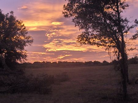5.56 Acres Spring Special Only : Ft. Meade : Polk County : Florida