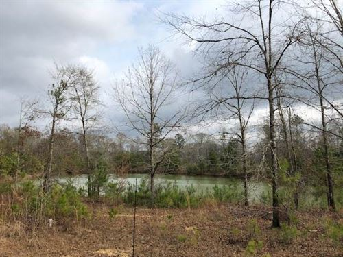 Beautiful Land With Pond : Brookhaven : Lincoln County : Mississippi