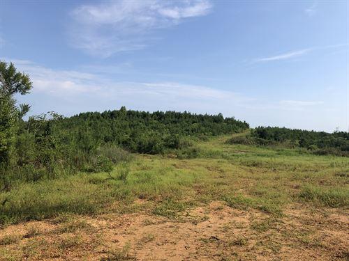 Turkey Foot Tract : Harper Hill : Hale County : Alabama