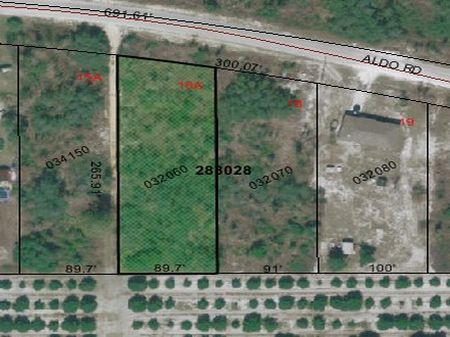 .5 Acre Sale - Aldo Rd. $19,990 : Babson Park : Polk County : Florida