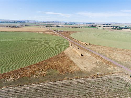 Buttermilk Road Farm : Lingle : Goshen County : Wyoming