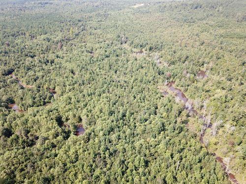 Five Mile Tract : Harper Hill : Hale County : Alabama