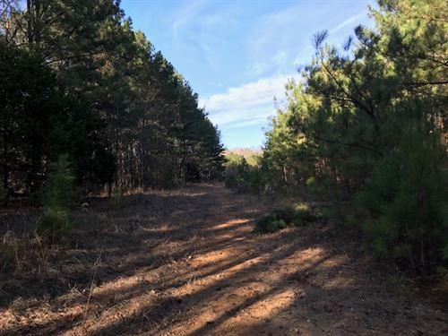 52 Acres in Subdivision Oneonta AL : Oneonta : Saint Clair County : Alabama
