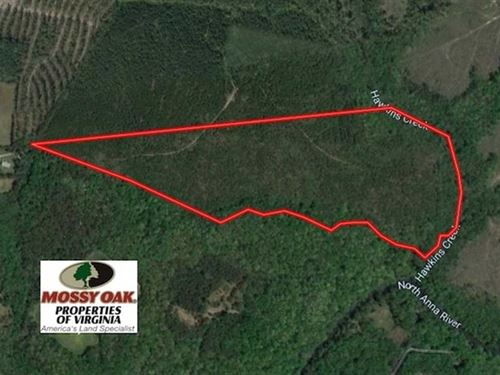 63 Acres of Timber And Hunting Lan : Ruther Glen : Caroline County : Virginia