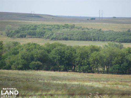 Ellsworth County Pasture : Carneiro : Ellsworth County : Kansas