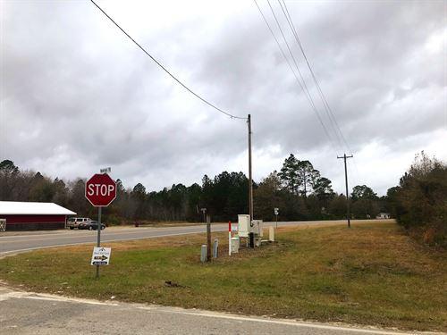 3.5 Acre Wooded Tract : Odum : Wayne County : Georgia