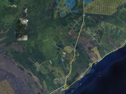 Black Sand Beach, Big Island, HI : Pahoa : Hawaii County : Hawaii