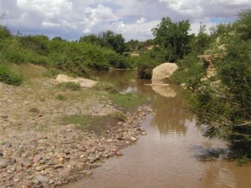 163 Acre Ranch With Creek Frontage : Heber : Navajo County : Arizona