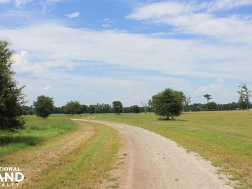 Eastgate Equestrian Farms : Meggett : Charleston County : South Carolina