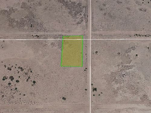 Escape Noisy Cities, 0.5 Acre Lot : Deming : Luna County : New Mexico