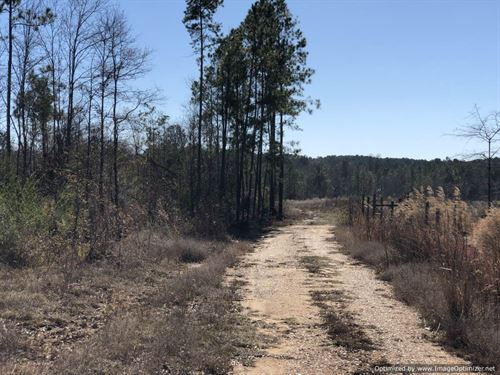 Homesite Ready : Brookhaven : Lincoln County : Mississippi