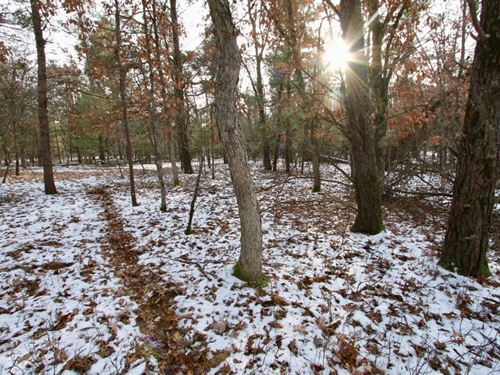 Buildable Lot 1 Within City Limits : Friendship : Adams County : Wisconsin