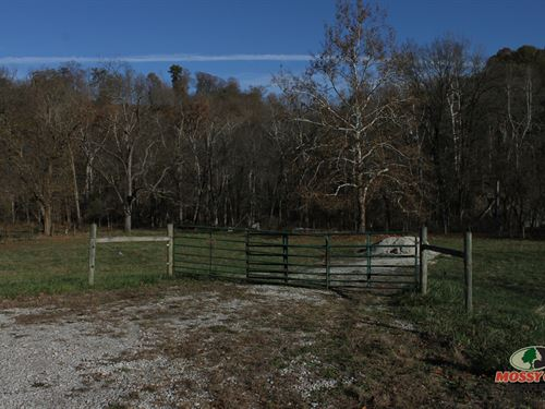 Hunting Farming And More 316 Acres : Carrollton : Calloway County : Kentucky